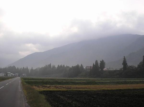 今年の秋は稲刈りの後にトラクターで耕してある田んぼが目立ちます