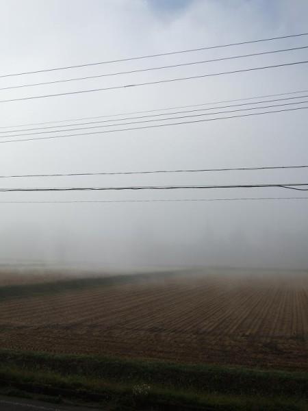 この時間はまだ霧に覆われています