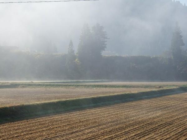 霧が晴れて澄んだ青空が見えてきました
