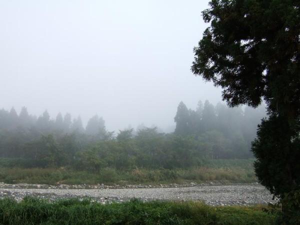 水無川を覆っていた霧はかなり晴れてきました