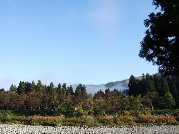 今朝の水無川の風景
