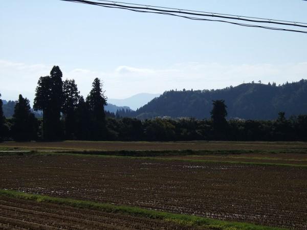 魚沼産コシヒカリの田んぼは快晴の秋晴れです