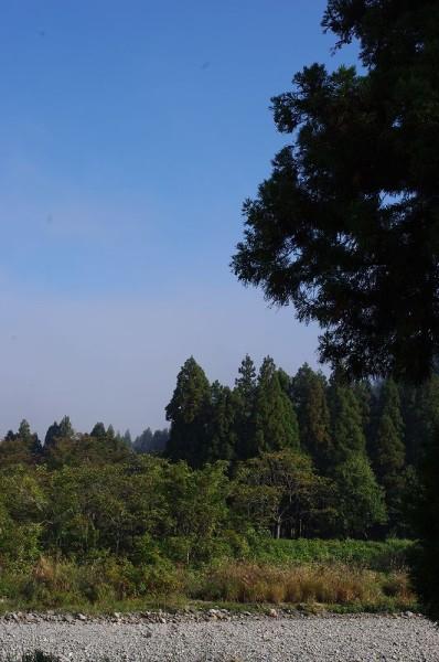 霧が晴れて快晴の青空が見えてきました