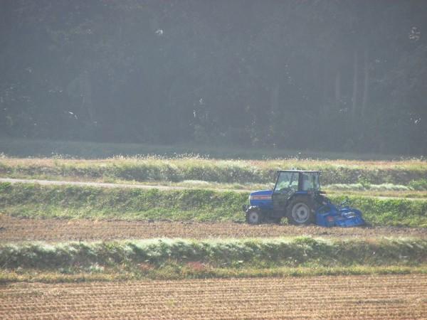 田んぼでは来年の稲作に向けてトラクター作業が行われています