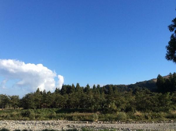 今朝は雲の動きが早いです