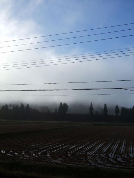 霧が晴れて上空に青空が見えています