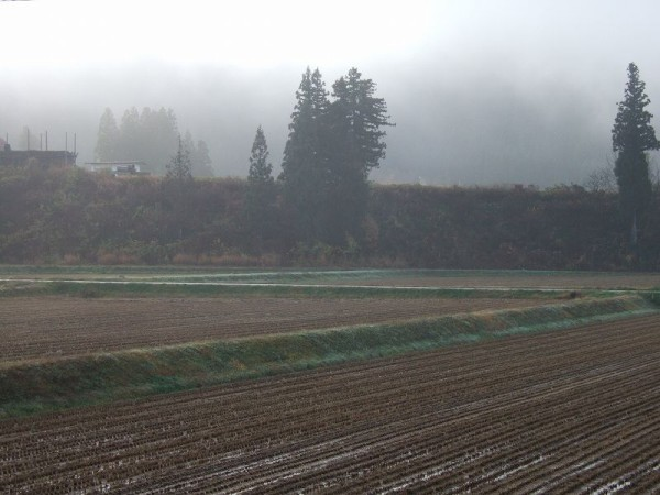 霧が晴れて青空が見えています