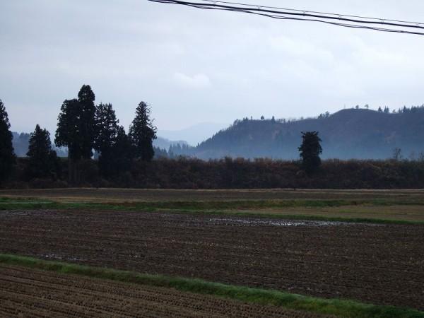 魚沼産コシヒカリの田んぼでは先ほどから雨が降り始めました
