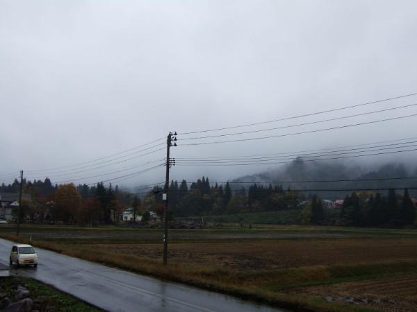 冷たい雨・・・だんだん冬が近づいてきます