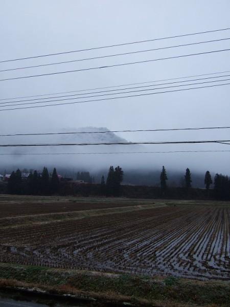 魚沼産コシヒカリの田んぼに初雪が降りました