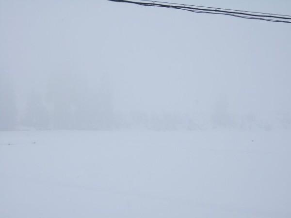 雪の降り方は弱まっています