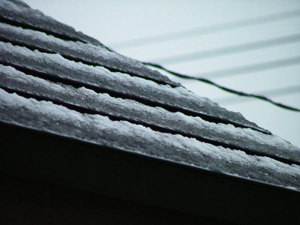 初雪が降りました