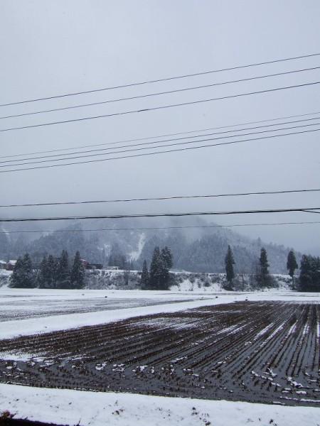 雪の降り方が弱いです