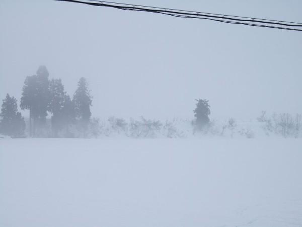 雨まじりの雪が弱く降っています