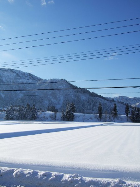 青空が広がり、陽ざしが田んぼの雪面に当たってまぶしいです