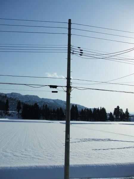 いい天気で雪解けが進んでいます