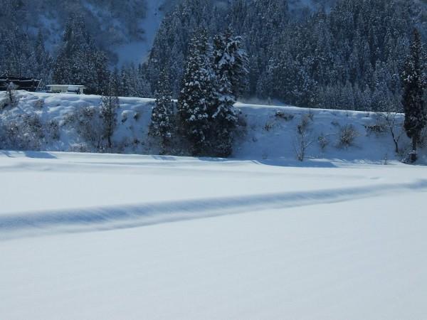 昨晩に20cmの雪・・・今日はポカポカ陽気
