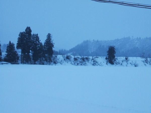 新潟県南魚沼市ではちらほらと雪が舞っています