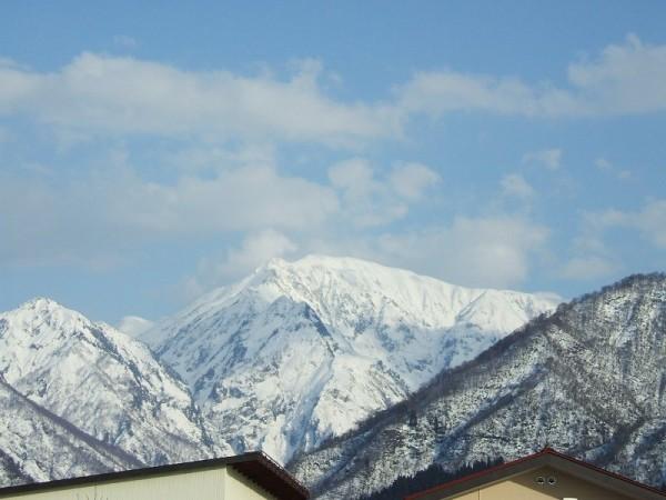 今年は駒ケ岳に春が来るのが早いと思います
