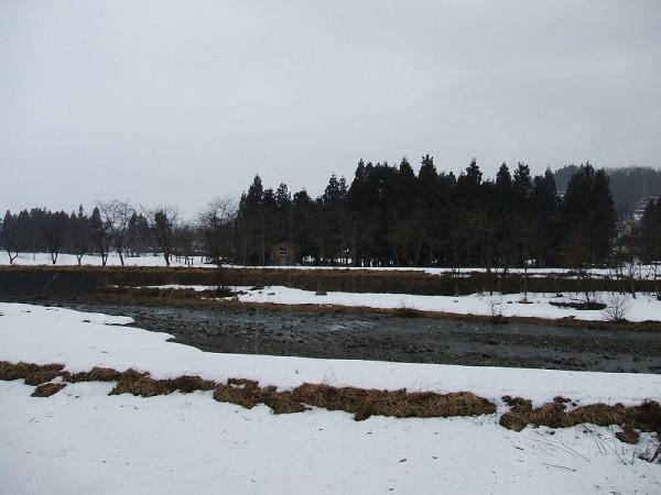 水無川は春の景色になっています