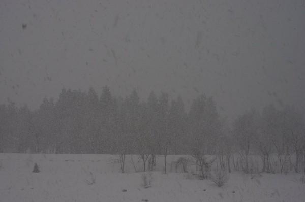雪の降り方が強まってきて雷がゴロゴロ鳴っています