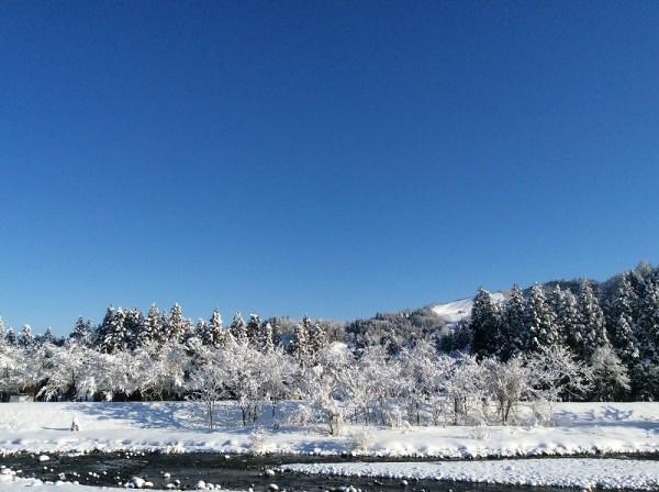 澄んだ青空が広がってすばらしい天気の朝です