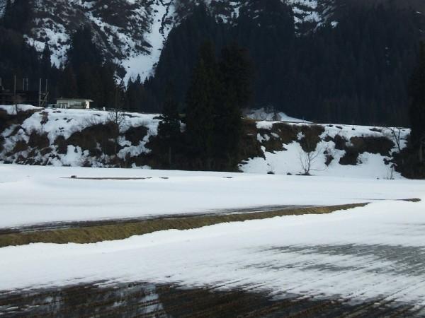 今日も雪解けが進みました