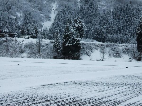 新潟県南魚沼市は冬景色に戻りました