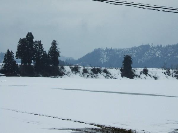 少しだけ昨日より雪が増えました