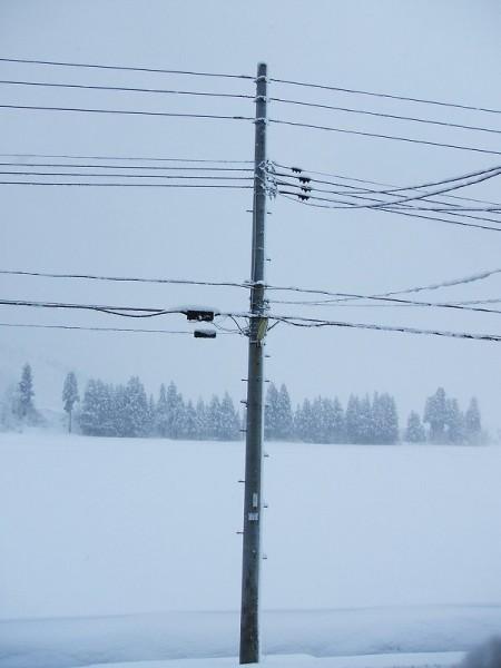 真冬の景色に戻りました