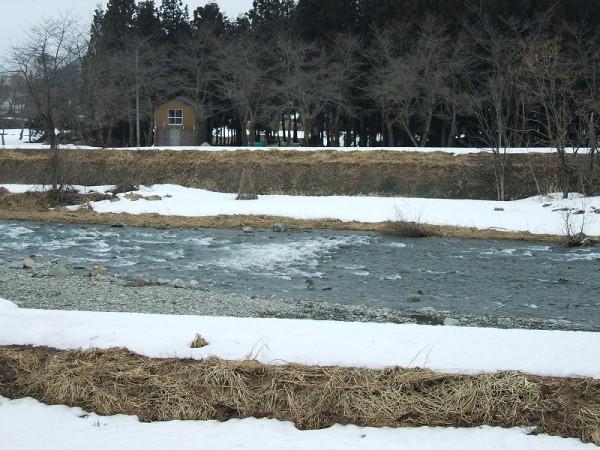 水無川では土手がどんどん見えてきて春の訪れを感じます