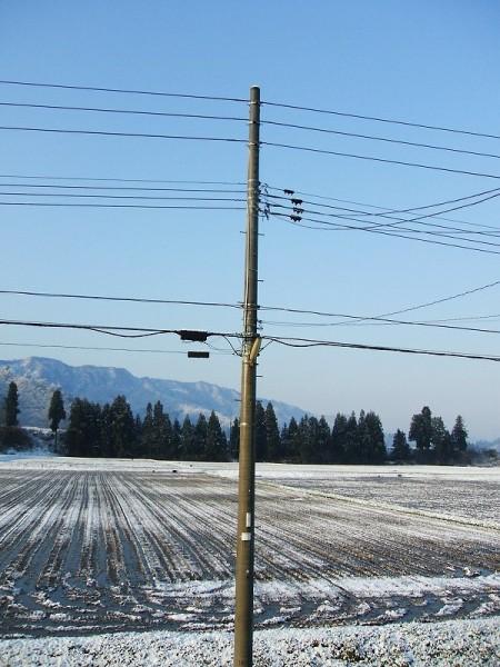 今朝、雪が少し積もっていました
