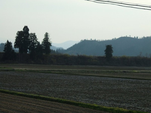 魚沼産コシヒカリの田んぼは今日もいい天気でした