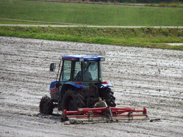 前の田んぼでトラクターによる代かき作業が行われています