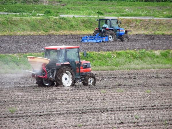 田んぼでトラクターによる田起こしや肥料撒き作業が行われています