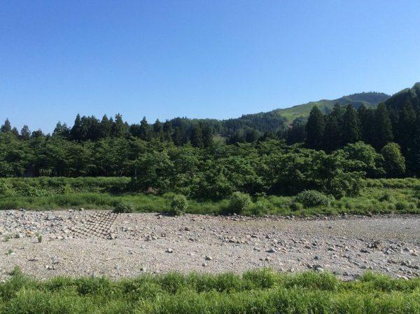6月になったばかりだというのに水無川の水が枯れてしまいました