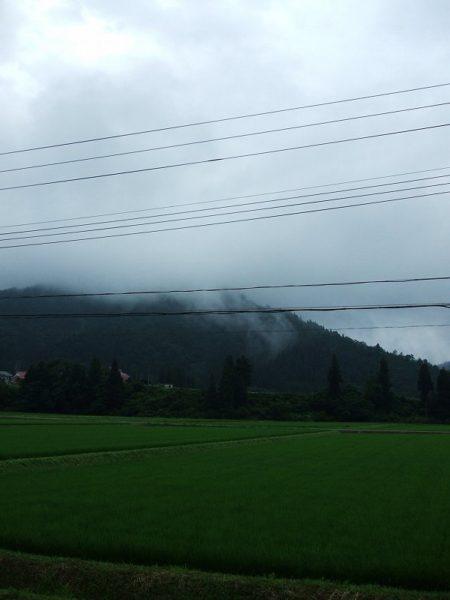 弱い雨降りで空気がジメジメしています