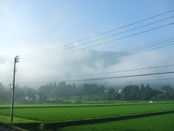 空気が涼しくて爽やかな朝です