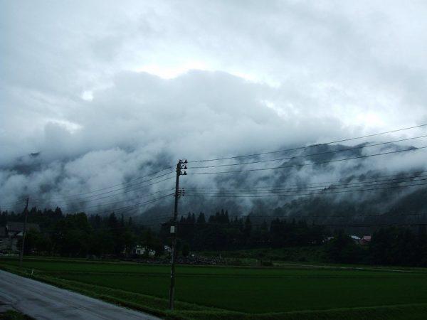 田んぼの向こうの山が霧で覆われています
