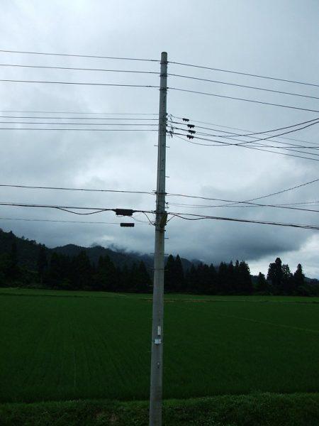 雨のおかげで涼しいです