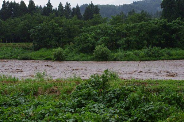 激しい夕立で水無川の水量が増えてきました