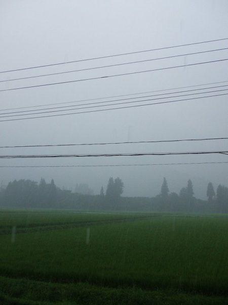 昨晩から断続的に強い雨が降っています