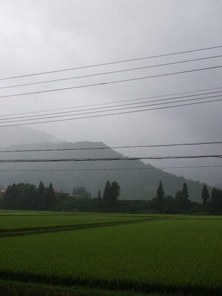 夕方が近づいて雨降りになりました