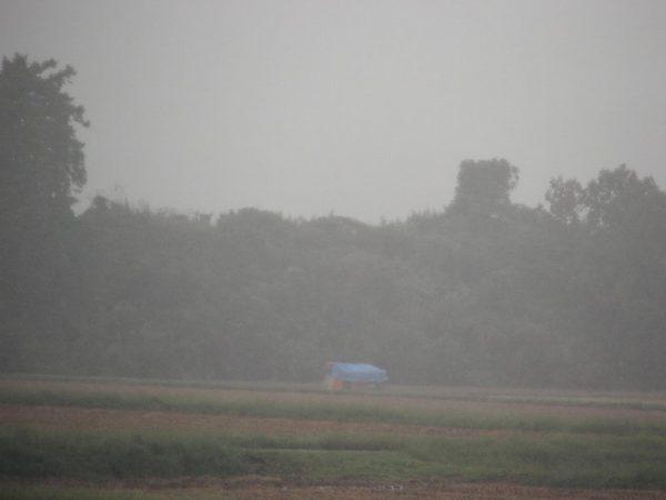 雨の中、ブルーシートに覆われたコンバインが寂しげです