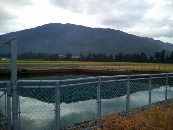 溜め池の水が少なくなっています