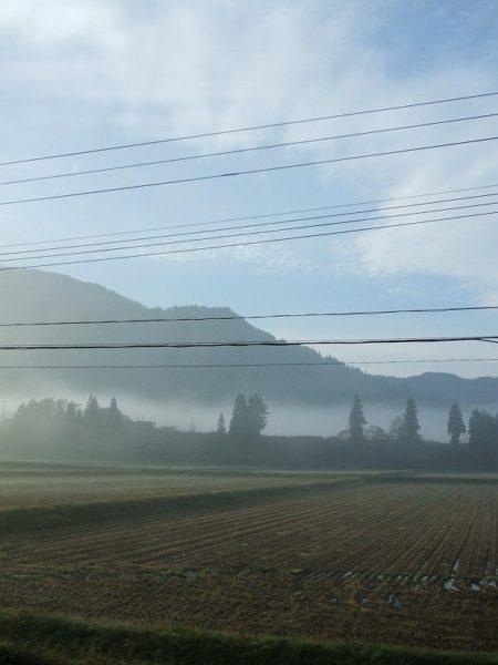 朝の冷え込みが厳しくなってきました