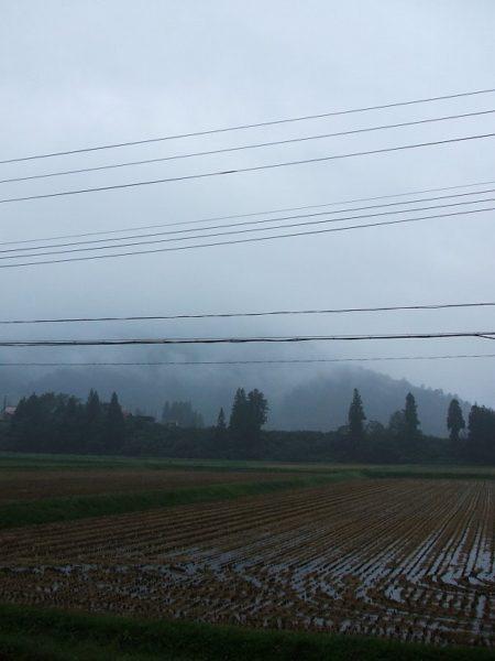 今朝も雨降り・・・だんだん冬が近づいてきているかんじです