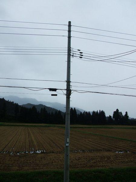 台風が過ぎ去って今朝は静かです