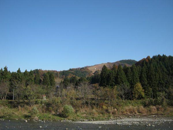 秋晴れのすばらしい天気です