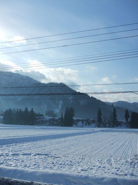 田んぼの雪が解けてきました